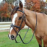 HDR Kushy Bridle with Flash Attachment