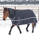 Classic Equine X Trainer 10K Blanket with Hood