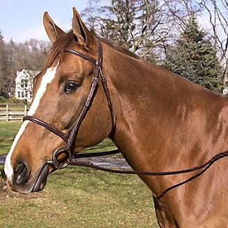 Silver Fox Raised and Braided Details Show Bridle with Laced Reins