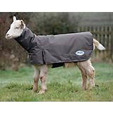 Weatherbeeta Deluxe Goat Coat w/ Neck Small Gray