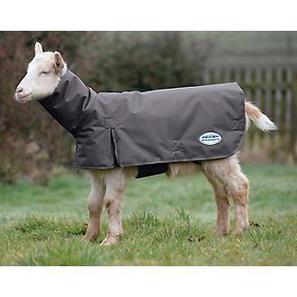 Weatherbeeta Deluxe Goat Coat w/ Neck