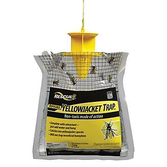 Rescue Yellowjacket Disposable Trap