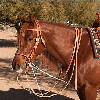 Al Dunning by Pro Choice Martingale w/Split Reins