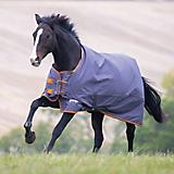 Shires Tempest Original 200G Blanket