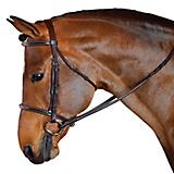 M Toulouse Standard Hunter Bridle
