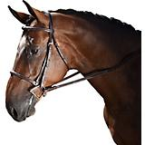 M Toulouse Novice Hunter Bridle