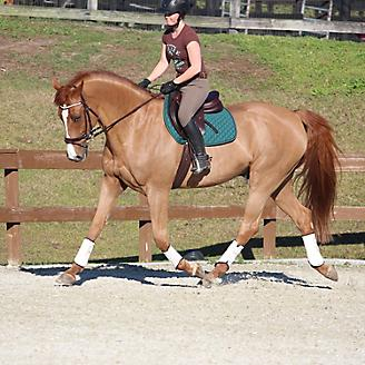 Adelaide Sport Boots Hind