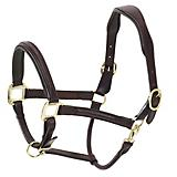 Ovation Fancy Raised Padded Halter Dk Brown