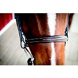 Lami-Cell Classic Bridle Chestnut