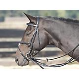 Lami-Cell Leather Draw Reins