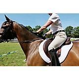 Bates Victrix TEST RIDE Saddle Havana Brown/Tan 17