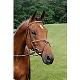 Arc de Triomphe Fig 8 Standard Crown Bridle