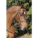 Arc de Triomphe Tribute Bridle w/ Reins