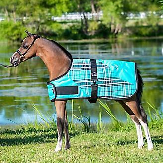 Ozark Mini Foal Blanket