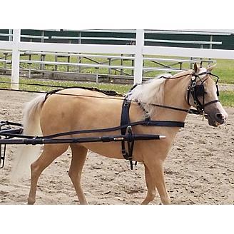 Ozark Mini/Pony Leather Harness