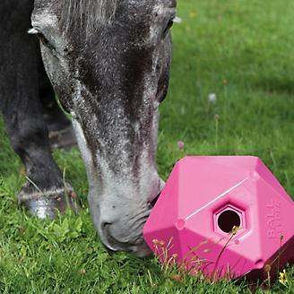 Shires Interactive Ball Feeder for Horses
