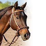 Professionals Choice Loping Hackamore