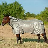 Cashel Econo Fly Sheet with Neck Guard