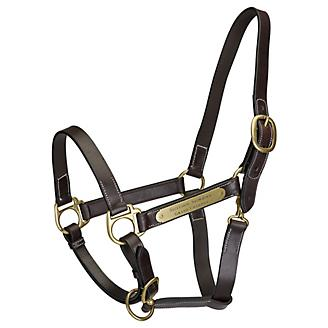 Gatsby Engraved 2-Plate Leather Halter w Snap