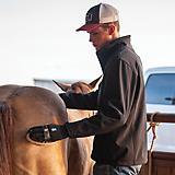 Classic Equine Goat Hair Body Brush