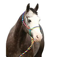 FREE Equisky Rainbow Rope Halter                   included free with purchase