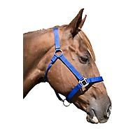 FREE Equisky East Coast Halter                     included free with purchase