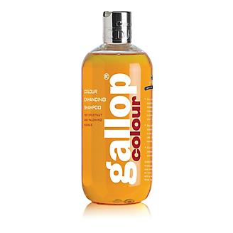 Gallop Color Enhancing Shampoo Chestnut 500ml