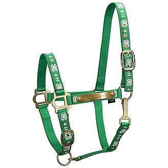 4-H Engraved Nylon Halter with Snap