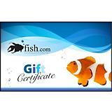 Fish.com Gift Certificate