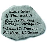 Smart Stone If this Rock is Wet it's Raining