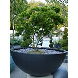 Faux Lead Finish Bowl Planter-30in