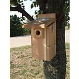 Ultimate Cedar Blue Bird House