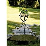 Virginia Plant Stand