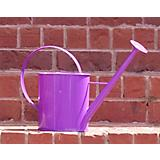1 Gallon Purple Metal Watering Can with Long Spout
