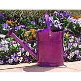 Griffith Creek Purple Metal Watering Can