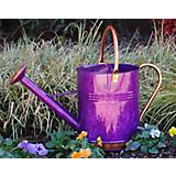 Griffith Creek Purple Deluxe Watering Can