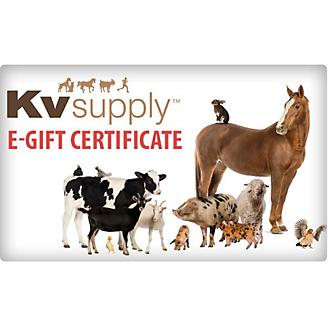 KVSupply.com eGift Certificate