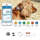PETKIT FIT P2 Smart Pet Activity Monitor