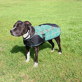 Kensington Plaid Dog Coat