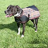 Kensington Plaid Dog Coat 2XL Deluxe Black