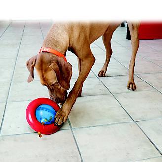 KONG Gyro Treat Dispensing Dog Toy