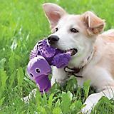 KONG Shells Dog Toy