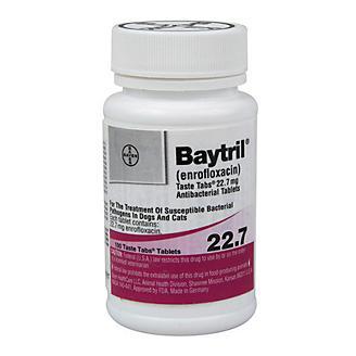 Baytril Taste Tablets 22.7mg