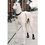 Thera-Paw Dog Boot