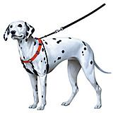 Sporn Pull-Control Dog Halter