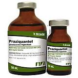Praziquantel Injectable