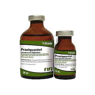 Praziquantel Injectable