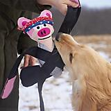 Doggles Pentapulls Dog Toy