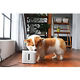 PETKIT Eversweet Smart Pet Fountain Waterer