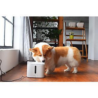 PETKIT Eversweet Smart Pet Fountain Waterer